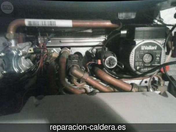 Reparación calderas junkers Bayárcal