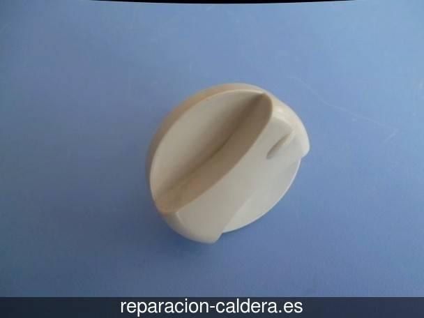 Reparar calderas junkers Berrueces