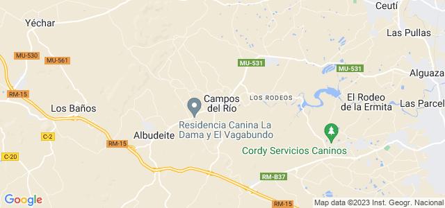 Mapa de Campos del Río