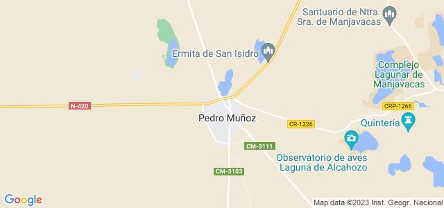 Mapa de Pedro Muñoz