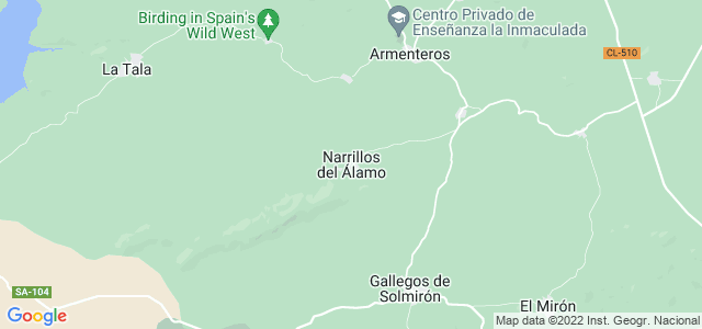 Mapa de Narrillos del Álamo