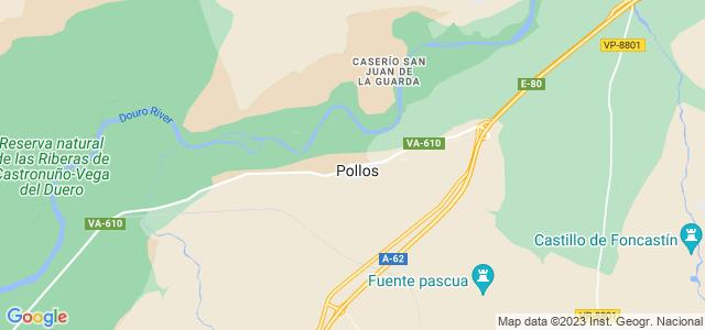 Mapa de Pollos