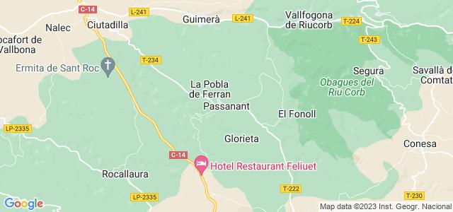 Mapa de Passanant i Belltall