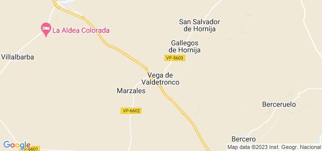 Mapa de Vega de Valdetronco