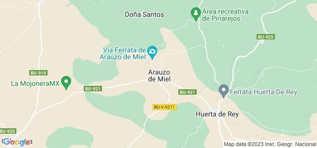 Mapa de Arauzo de Miel