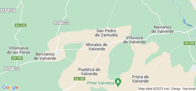 Mapa de Morales de Valverde