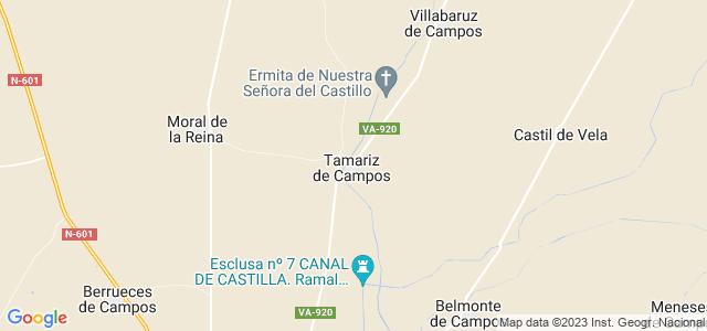 Mapa de Tamariz de Campos