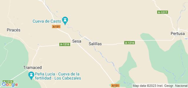 Mapa de Salillas