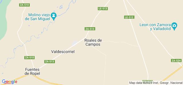 Mapa de Roales de Campos